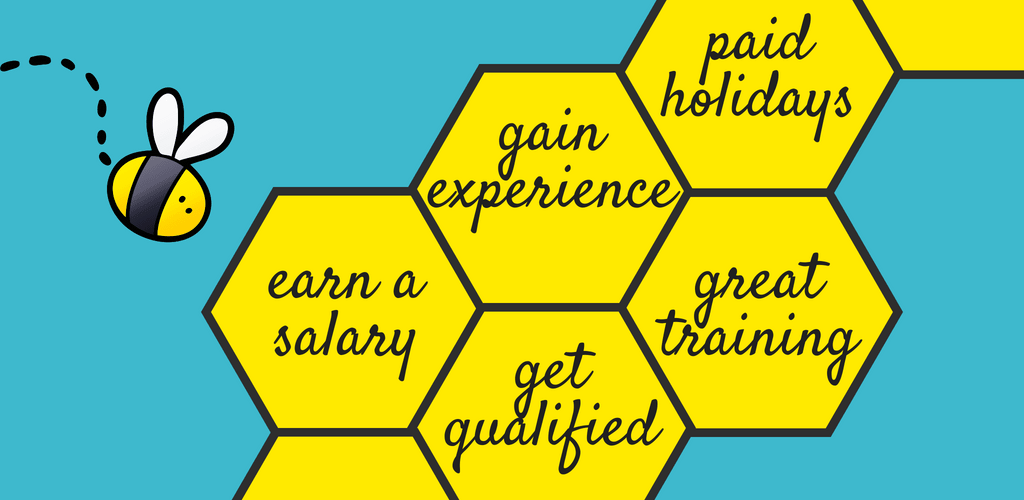bee flying towards honeycomb with wording containing paid holidays, gain experience, great training, earn a salary and get qualified.